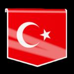 ریموت دسکتاپ بایننس ترکیه